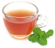 Herbal tea in a cup with mint leaves Stock Images