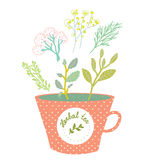 Herbal tea cup - retro style  illustration Royalty Free Stock Photos