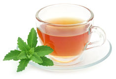 Herbal tea in a cup with stevia leaves Royalty Free Stock Image