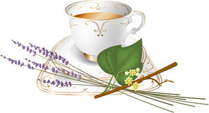 Herbal tea cup, tilia e lavender royalty free illustration