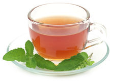 Herbal tea in a cup with tulsi leaves. Over white background Stock Image