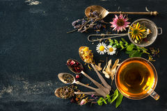 Herbal tea. Cup of herbal tea with wild flowers and various herbs Royalty Free Stock Photography