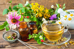 Herbal tea. Cup of herbal tea with wild flowers and various herbs Stock Image