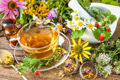 Herbal tea stock photos