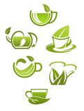 Herbal tea cups with green leaves Royalty Free Stock Photos
