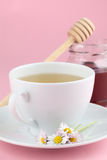 Herbal tea with daisies and honey Stock Photos