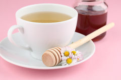 Herbal tea with daisies and honey Stock Photography