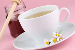 Herbal tea with daisies and honey Royalty Free Stock Images