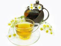 Herbal tea with daisy flowers Royalty Free Stock Photos
