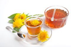 Herbal tea of dandelion with honey on white background. Dandelion honey and herbal tea on white background, with yellow blossoms and green leaf royalty free stock photo