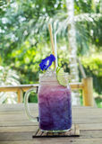 Herbal Tea Drinks in The Green Park Concept, Single Glass of Gradient Purple Butterfly Pea Juices Decorated with Flowers Royalty Free Stock Image