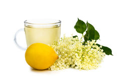 Herbal tea with elder flower Stock Photography