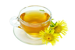 Herbal tea with elecampane in a glass cup Royalty Free Stock Photos