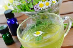 Herbal tea with essential oils Royalty Free Stock Images