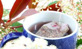 Herbal tea and flowers Stock Photography