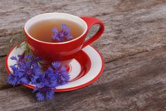 Herbal tea with flowers of cornflower Stock Photos
