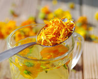 Herbal tea from flowers of a marigold in a transparent glass mug. Royalty Free Stock Photos