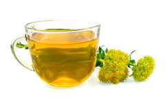 Herbal Tea and Flowers Rhodiola rosea Stock Photography