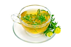 Herbal tea with flowers Rhodiola rosea in a glass cup Royalty Free Stock Images