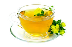 Herbal tea with flowers Rhodiola Rosea on saucer royalty free stock photography