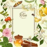 Herbal Tea Frame Royalty Free Stock Photo