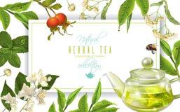 Herbal tea frame Stock Image