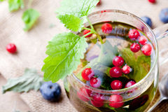 Herbal tea with fresh berries. Romantic autumn, summer background. Royalty Free Stock Images