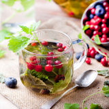 Herbal tea with fresh berries. Romantic autumn, summer background. Stock Photo