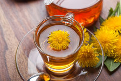 Herbal tea with fresh dandelion blossom Stock Photo