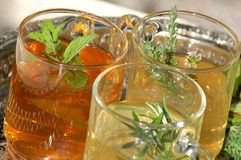 Herbal tea and fresh herbs close up Royalty Free Stock Image