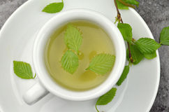 Herbal tea. With fresh leavs Royalty Free Stock Images