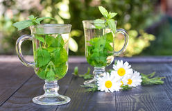 Herbal tea. With fresh mint and melissa Royalty Free Stock Photo