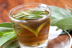Herbal tea with fresh sage on wooden flooring, Royalty Free Stock Photo