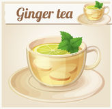 Herbal tea with ginger root and mint illustration. Cartoon vector icon Stock Images