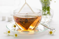 Herbal tea in glass cup. Glass teacup with soothing herbal tea in silk bag Stock Images