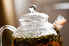 Herbal tea in glass teapot Royalty Free Stock Photo