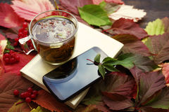 Herbal tea in a glass transparent cup, book and smartphone on autumn leaves. Royalty Free Stock Images