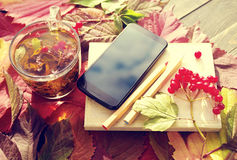 Herbal tea in a glass transparent cup, book and smartphone on autumn leaves. Royalty Free Stock Image