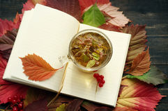 Herbal tea in a glass transparent cup and open pure notebook on autumn leaves. Royalty Free Stock Image