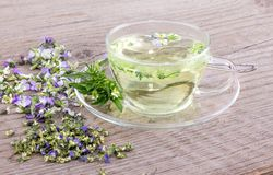 Herbal tea with heartsease. Cup of tea with fresh and dried flowers from field pansy on a wooden background Royalty Free Stock Photo