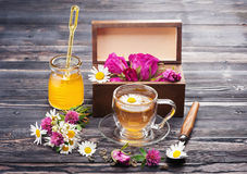 Herbal tea with honey and flowers. Stock Photography