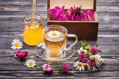 Herbal tea with honey and flowers. Wild herbs and flowers. Stock Photos