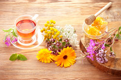 Herbal tea, honey and various herbs Royalty Free Stock Image