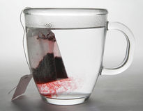 Herbal Tea Infusion. Herbal Tea bag diffusing into a glass mug of hot water Stock Images