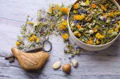 Herbal tea with ivan-tea, cornflower, calendula, heather and thyme. The key to health and longevity. Clay Bird is a whistle Royalty Free Stock Photos