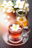 Herbal tea with jasmine flowers and honey Stock Image