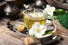Herbal tea with Jasmine flowers. Popular Chinese green tea with white Jasmine flowers stock photos
