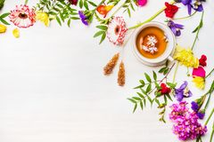 Herbal  tea laid out beside fresh colorful spring flowers sugar sticks, Border, place for text Stock Images
