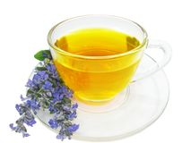 Herbal tea with lavender extract Stock Photos