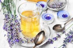 Herbal Tea with lavender. Fragrant herbal tea with flowering lavender sprigs Royalty Free Stock Photo